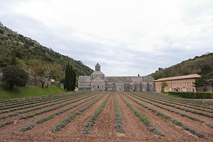 Sénanque Abbey - Image: General view of the Sénanque Abbey