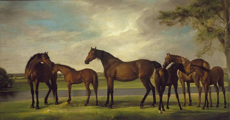 File:George Stubbs 023.jpg