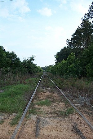 Georgia Midland Railroad - Image: Georgia Midland tracks 05 14 04 186