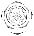 Geranium pratense flowerdiagram.png