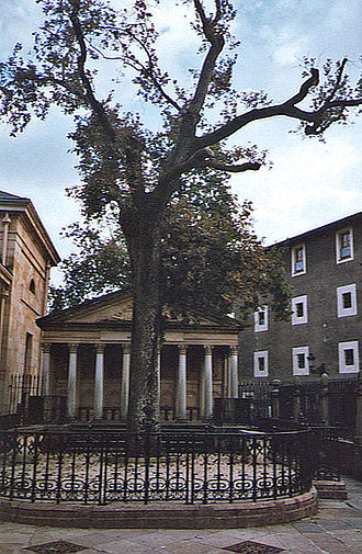 Biscay - The historic Oak of Gernika, symbol of the Basque institutions.