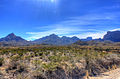 Gfp-texas-big-bend-national-park-mountains-in-the-distance.jpg