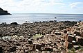 Giant's Causeway - geograph.org.uk - 474829.jpg