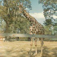 Louisiana Purchase Gardens And Zoo Wikipedia