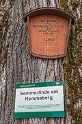 Globasnitz Hemmaberg Sommerlinde Schilder 11032021 8805.jpg