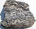 Gneiss (Joshimath Formation, Proterozoic; outcrop at Joshimath, Uttarakhand State, Indian Himalayas) 2 (26529327580).jpg
