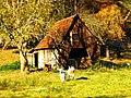 Goats And Sheep - panoramio.jpg