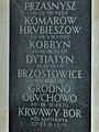 Grób Nieznanego Żołnierza w Warszawie - Dytiatyn Brzostowice Grodno.jpg