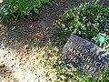 Grabstelle (462) und 463 - Mutter Erde fec.jpg