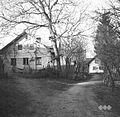 Gradež 1964 (3).jpg