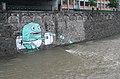 Graffiti, Wienfluss-Hochwasser Juni2009a.jpg