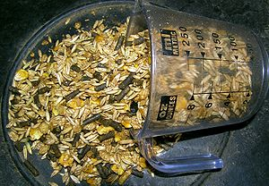 A commercially prepared grain mix for horses, ...