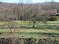 Graitschen 2004-04-12 01.jpg