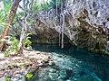 Gran cenote Tulum turtle (20767265064).jpg