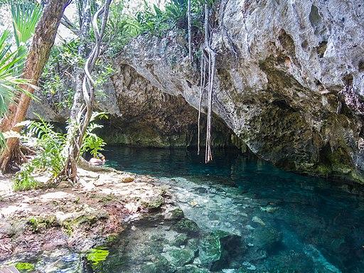 best tulum tours Gran cenote Tulum turtle