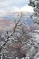 Grand Canyon - panoramio (27).jpg