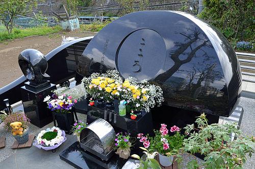 東海寺の墓碑。後ろにはカラタチが植えられている Wikipediaより