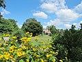 Green Spring Gardens in August (14734057447).jpg