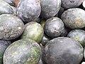 Gren skin Watermelon.jpg