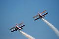 Guinot wing-walkers (2561531394).jpg