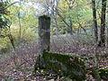 Gut Waldfrieden Ruine Gutshaus.jpg