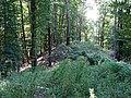 Hügelgrab Bahnriegl 2.jpg