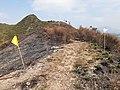 HK 香港北區North District 本地遊 行山 Hiking 大石磨 Tai Shek Mo hill mountain November 2020 SS2 37.jpg