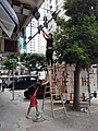 HK WC 灣仔 Wan Chai 駱克道 Lockhart Road 15pm September 2020 SS2 07.jpg
