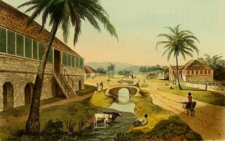 Hakewill, A Picturesque Tour of the Island of Jamaica, Plate 06.jpg