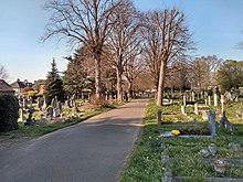 Hampton Cemetery, general view from gate.jpg