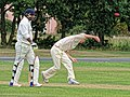 Hatfield Heath CC v. Thorley CC on Hatfield Heath village green, Essex, England 06.jpg