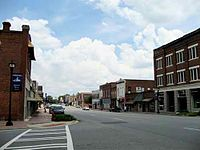 Hawkinsville Downtown.jpg