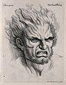 Head of a man with hair raised, expressing despair. Engravin Wellcome V0009361.jpg