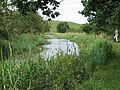 Hill from the canal - geograph.org.uk - 1044234.jpg