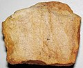 Hillsboro Sandstone (Lower Devonian; northwest of Sinking Spring, Ohio, USA) 13.jpg