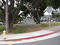 Hillsdale High School 2012 2.JPG