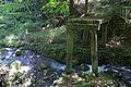 Hiyoshi-taisha04s4592.jpg