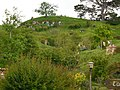 Hobbiton, The Shires, Middle Earth, Matamata, North Island, New Zealand - panoramio (3).jpg