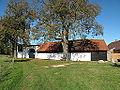 Hodkov (Nechvalice), strom a dům.jpg