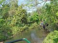 Hollong river.jpg