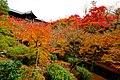 Honmachi 15-chome, Higashiyama Ward, Kyoto, Kyoto Prefecture 605-0981, Japan - panoramio (11).jpg