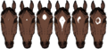Horsemarkings Stars2.png