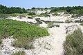Horseneck Beach State Reservation - Westport, MA - panoramio (11).jpg