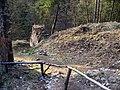 Hrad Zlenice (08).jpg