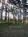 Ignalinos sen., Lithuania - panoramio (3).jpg