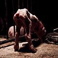 Igualdad Animal - Investigación Granjas Cerdos Toledo - 15-06-2010 - 54 (7138378271).jpg