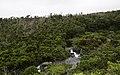 Ilha das Flores P5260058 (35877061021).jpg