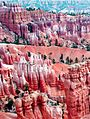 In the Pink, Bryce Canyon, UT 9-09 (26660071244).jpg