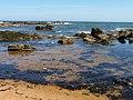 Incoming tide - geograph.org.uk - 2387665.jpg
