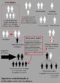 Ingeniería social genocidio blanco.png
